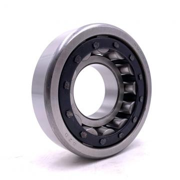 1.181 Inch | 30 Millimeter x 3.543 Inch | 90 Millimeter x 0.906 Inch | 23 Millimeter  CONSOLIDATED BEARING NUP-406  Cylindrical Roller Bearings