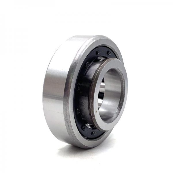 9.449 Inch   240 Millimeter x 17.323 Inch   440 Millimeter x 2.835 Inch   72 Millimeter  CONSOLIDATED BEARING NUP-248 M  Cylindrical Roller Bearings #5 image